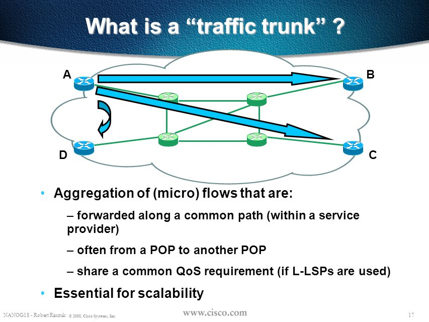 What is a traffic trunk