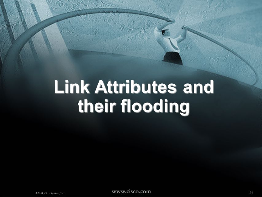 Link Attributes and their flooding