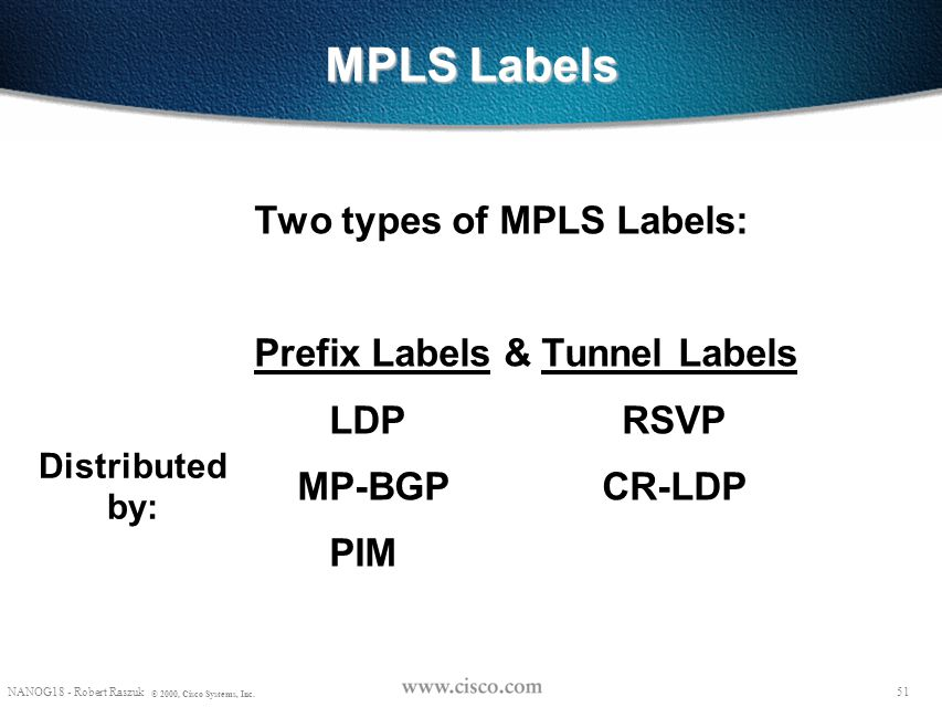 MPLS Labels Two types of MPLS Labels: Prefix Labels & Tunnel Labels