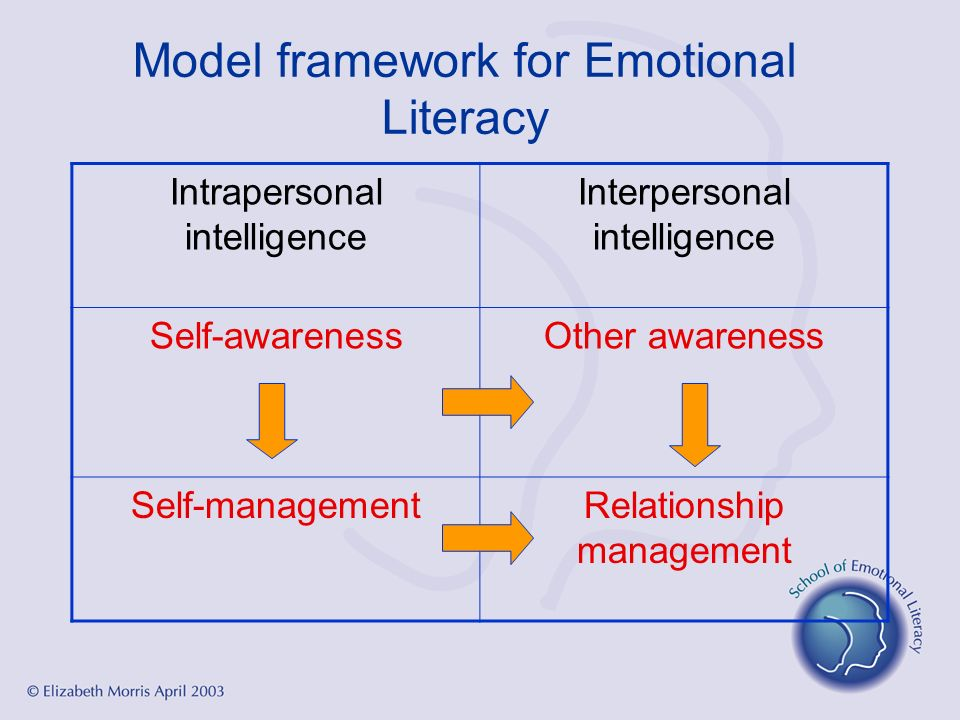 Model framework for Emotional Literacy