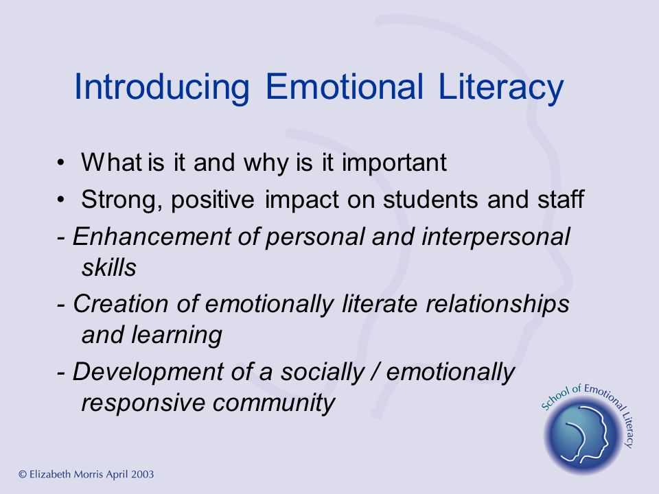 Introducing Emotional Literacy