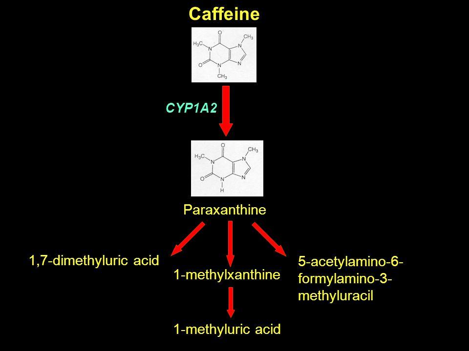 Caffeine Paraxanthine 1,7-dimethyluric acid