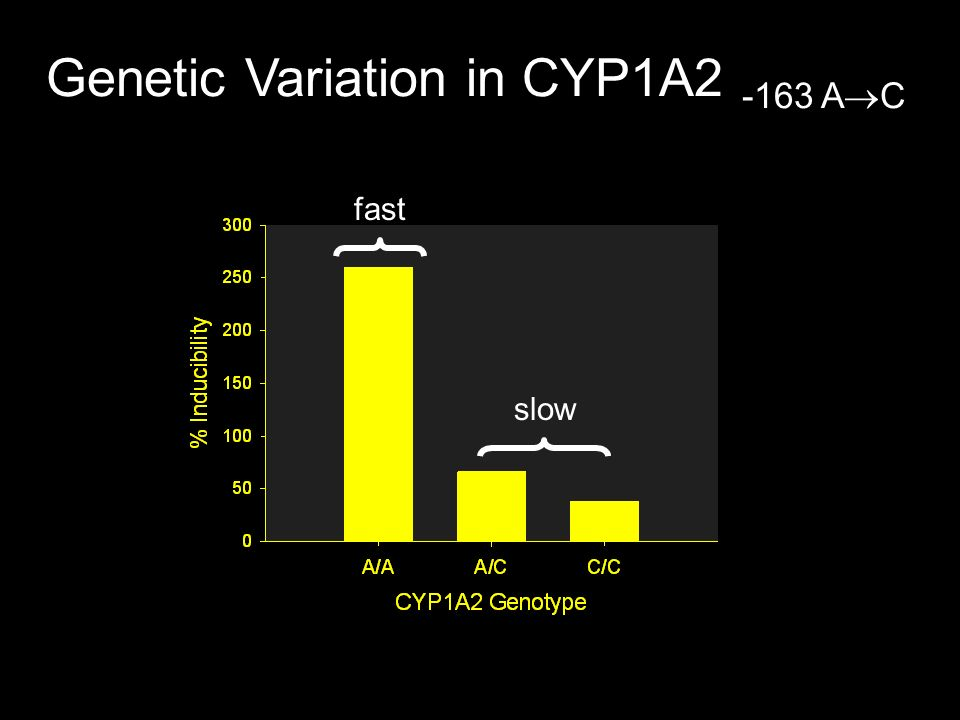 Genetic Variation in CYP1A2 -163 AC