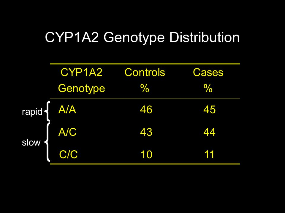 CYP1A2 Genotype Distribution