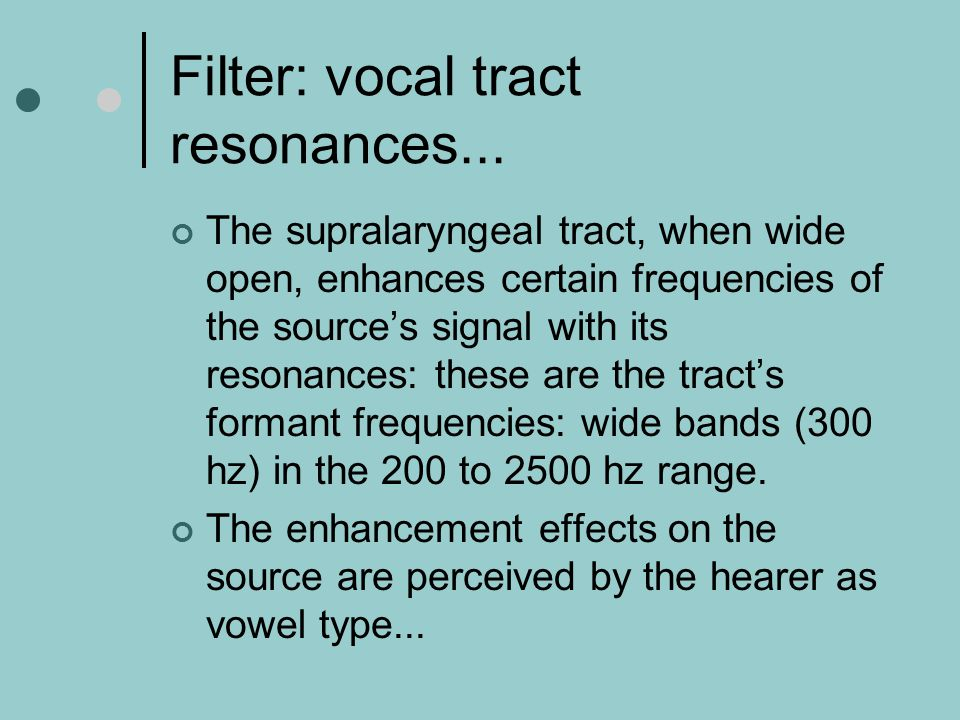 Filter: vocal tract resonances...