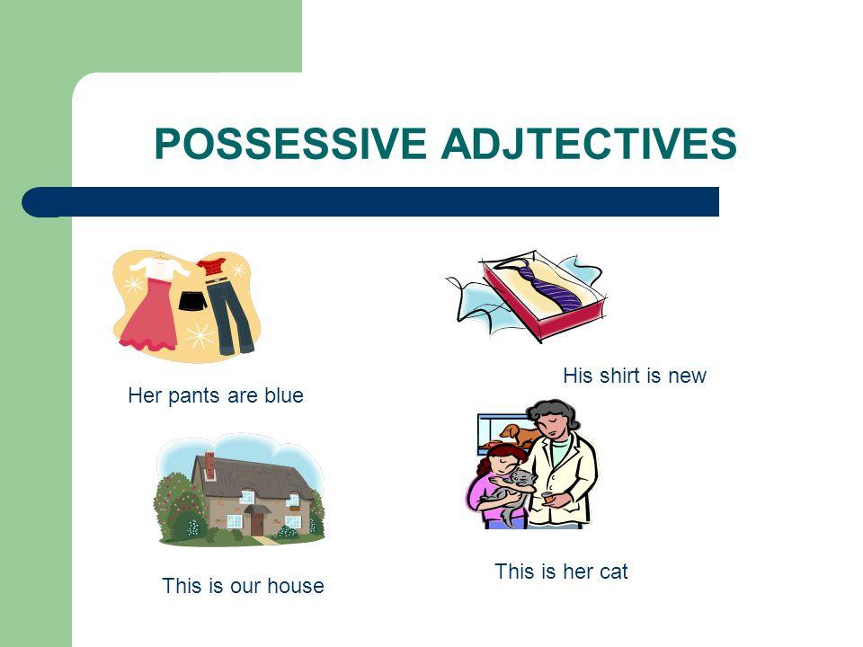 POSSESSIVE ADJTECTIVES