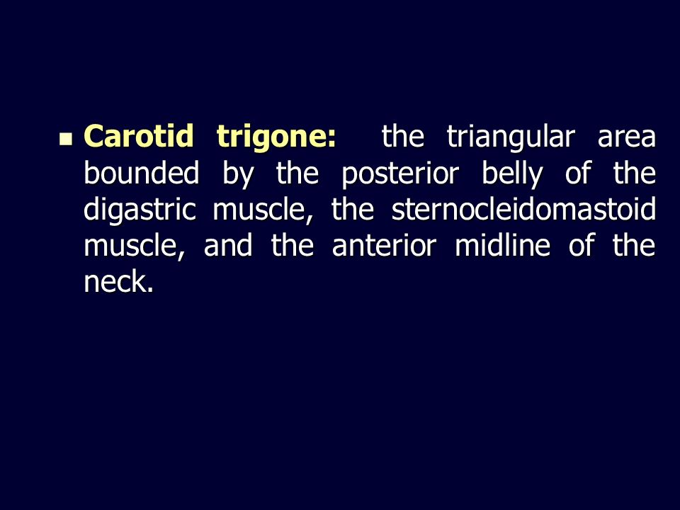Carotid trigone: the triangular area bounded by the posterior belly of the digastric muscle, the sternocleidomastoid muscle, and the anterior midline of the neck.
