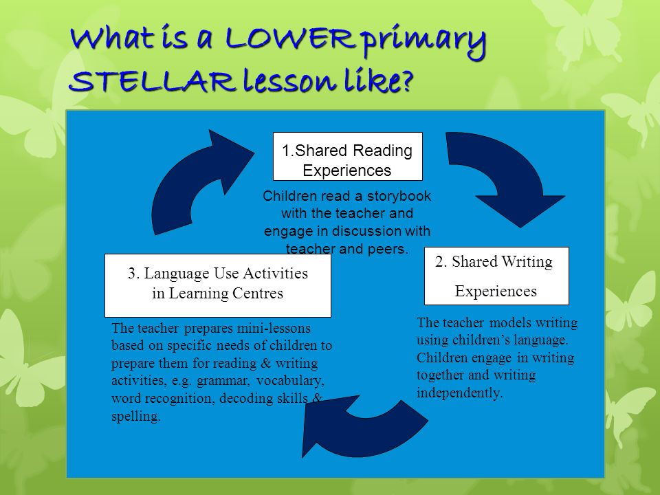 What is a LOWER primary STELLAR lesson like