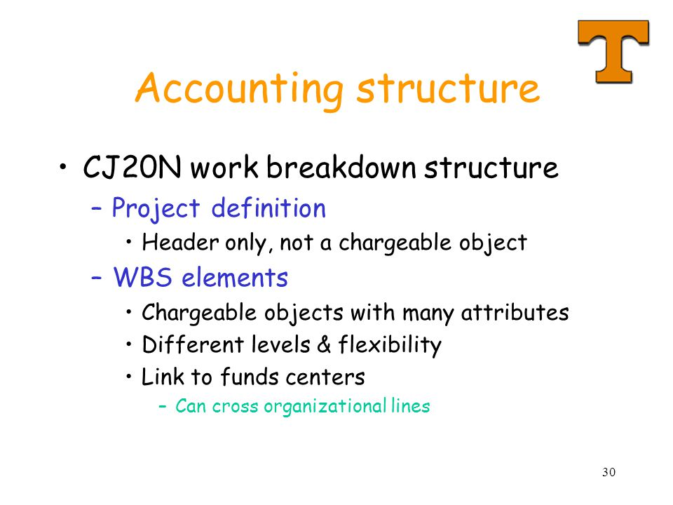 Accounting structure CJ20N work breakdown structure Project definition