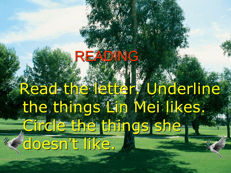 READING Read the letter. Underline the things Lin Mei likes. Circle the things she doesn't like.
