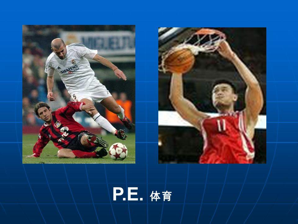 P.E. 体育