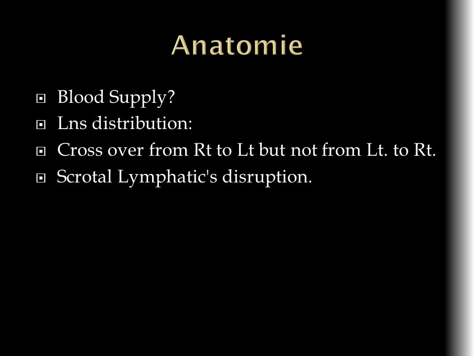 Anatomie Blood Supply Lns distribution: