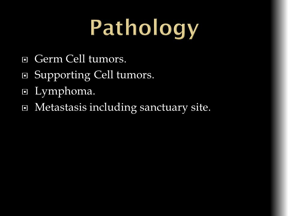 Pathology Germ Cell tumors. Supporting Cell tumors. Lymphoma.