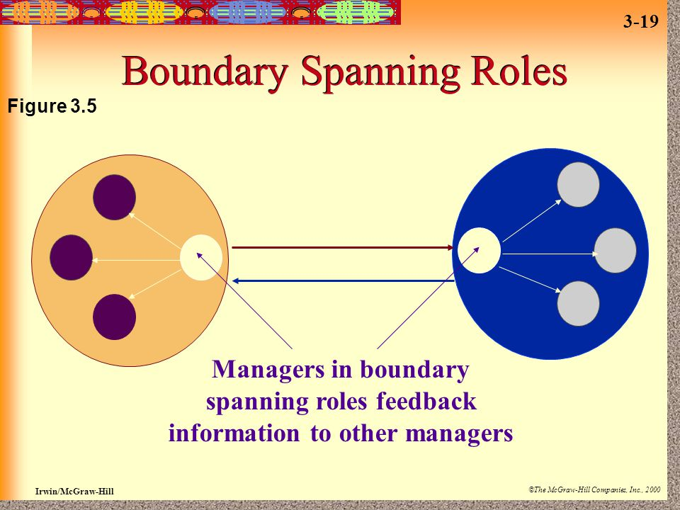 Boundary Spanning Roles