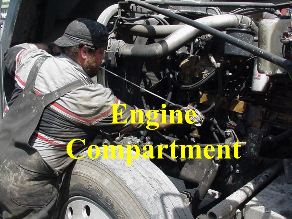 Engine Compartment Check engine oil, coolant, power steering and transmission fluid levels.