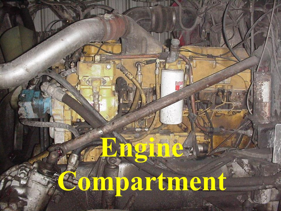 Engine Compartment Check all hoses for signs of leakage or seeping.