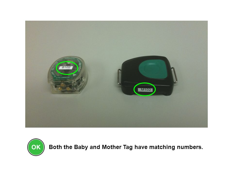Both the Baby and Mother Tag have matching numbers.