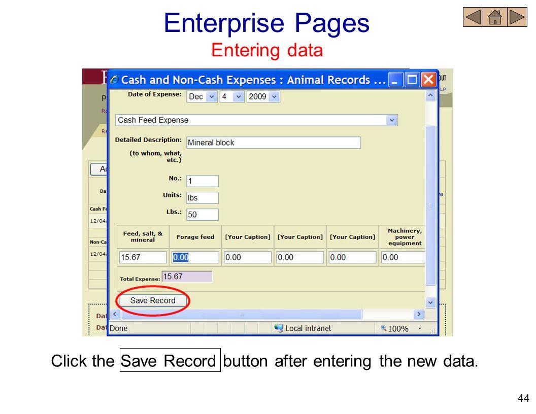 Enterprise Pages Entering data
