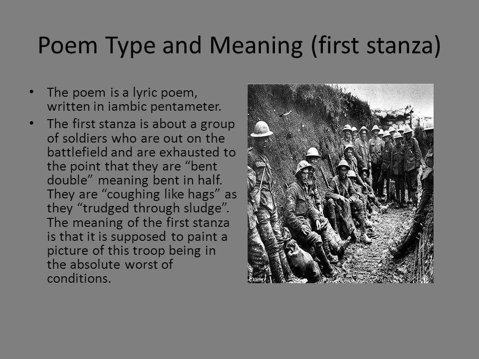 Poem Type and Meaning (first stanza)