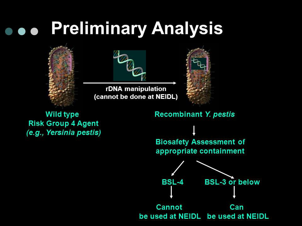 Preliminary Analysis Wild type Risk Group 4 Agent