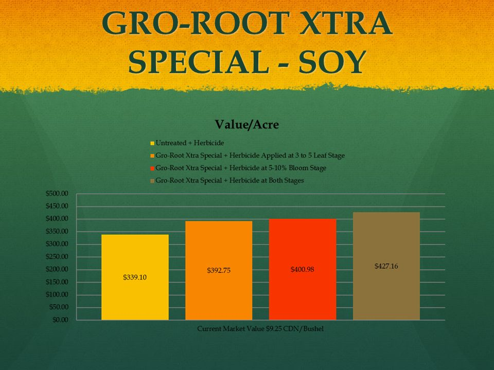 GRO-ROOT XTRA SPECIAL - SOY