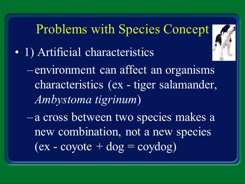 Problems with Species Concept