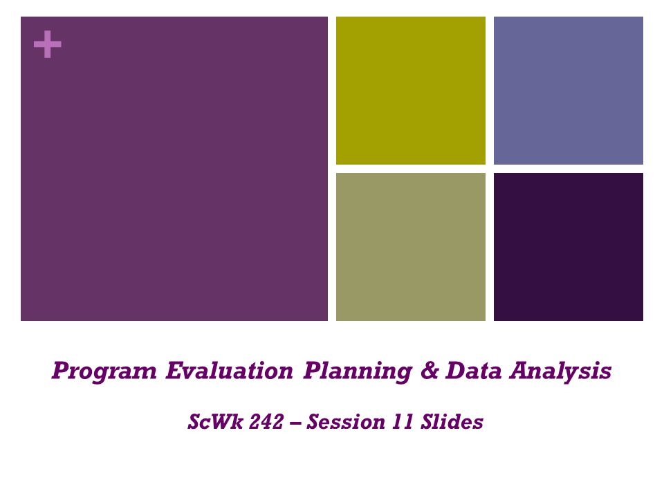 Program Evaluation Planning & Data Analysis