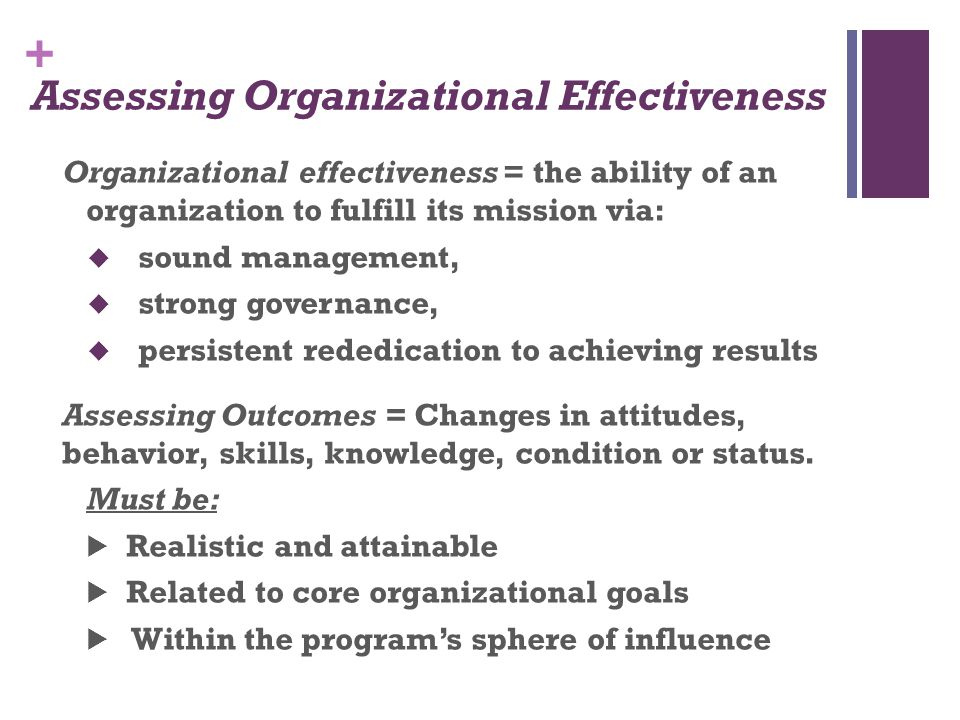 Assessing Organizational Effectiveness