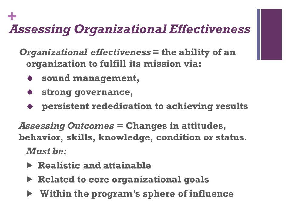 Assessing Organizational Effectiveness