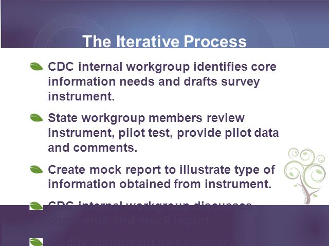 The Iterative Process CDC internal workgroup identifies core information needs and drafts survey instrument.