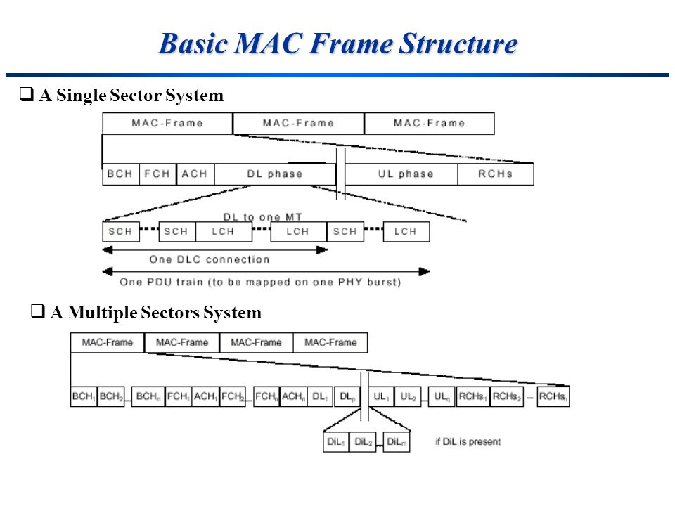 Basic MAC Frame Structure