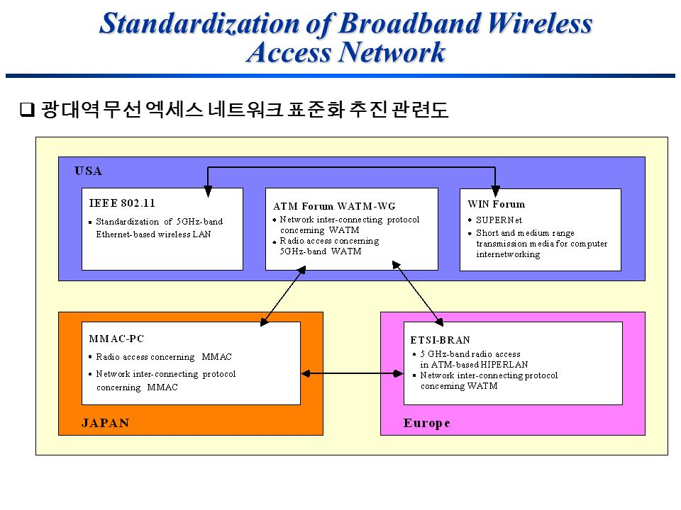 Standardization of Broadband Wireless Access Network