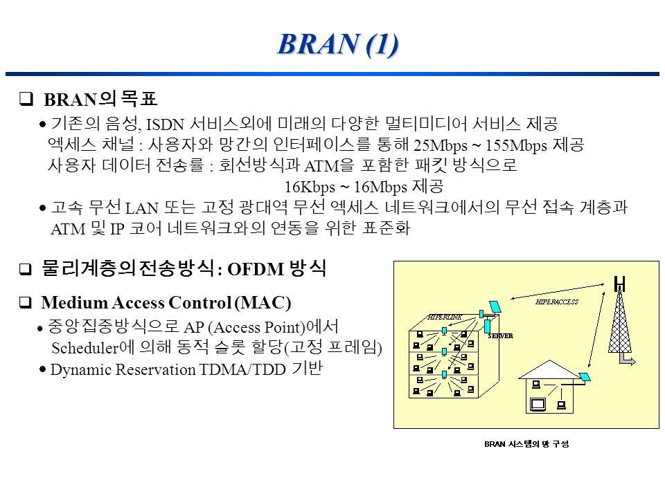 BRAN (1) BRAN의 목표  기존의 음성, ISDN 서비스외에 미래의 다양한 멀티미디어 서비스 제공
