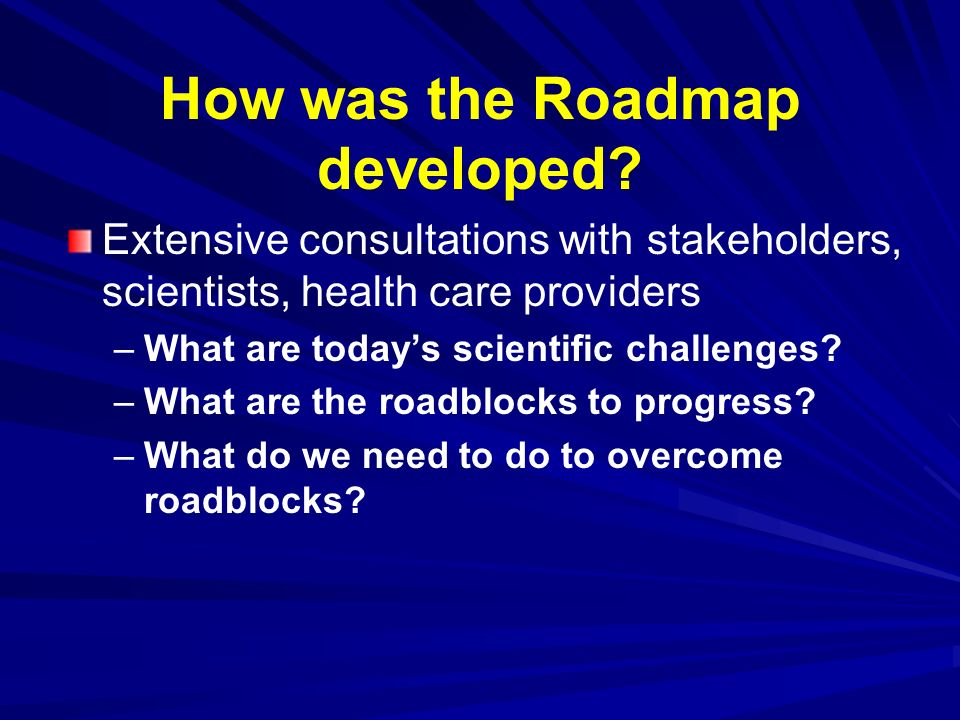 How was the Roadmap developed