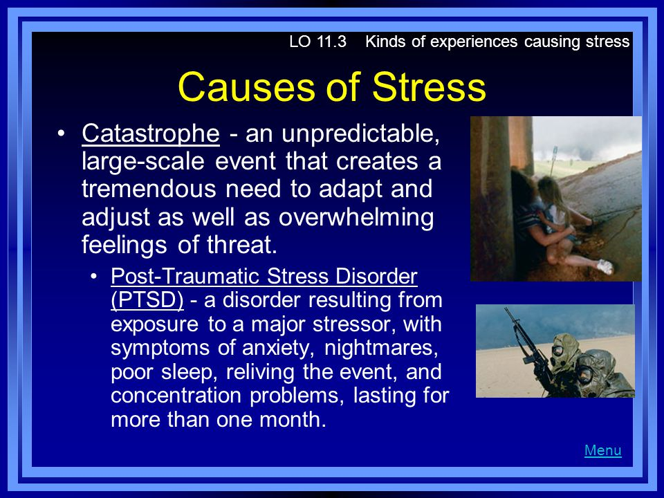 LO 11.3 Kinds of experiences causing stress