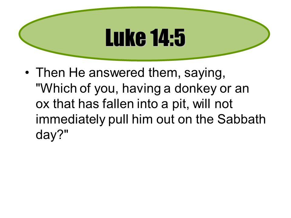 Luke 14:5