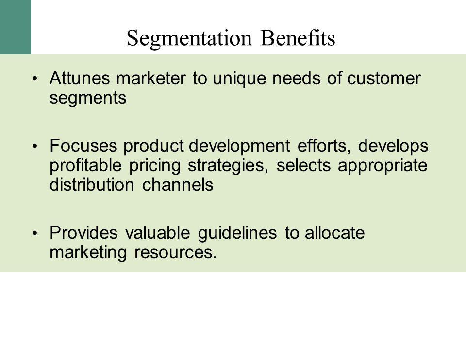Segmentation Benefits