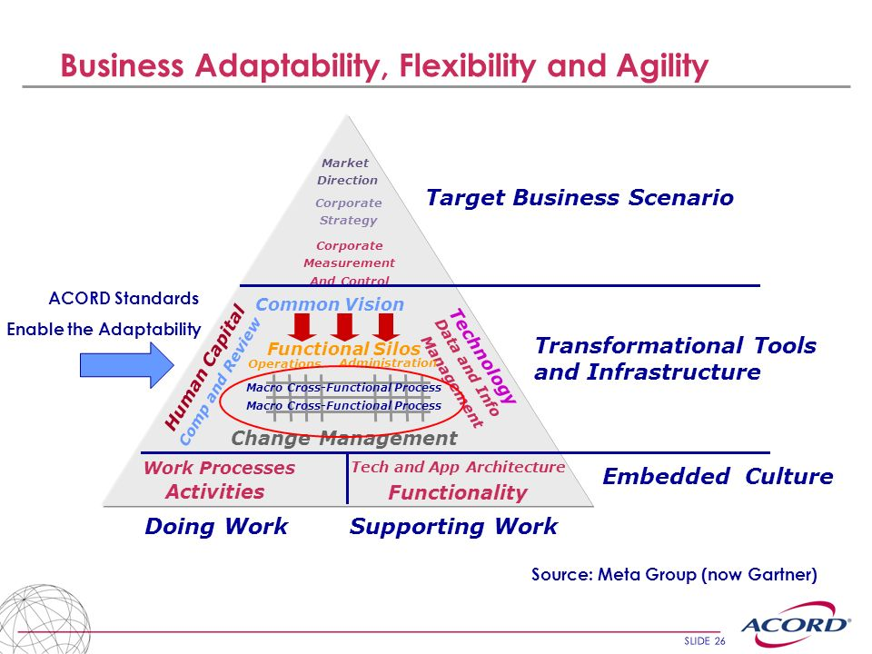 Business Adaptability, Flexibility and Agility