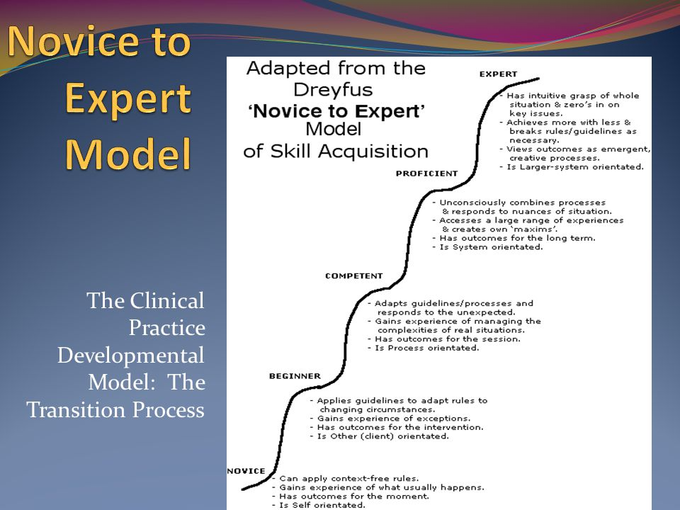 The Clinical Practice Developmental Model: The Transition Process