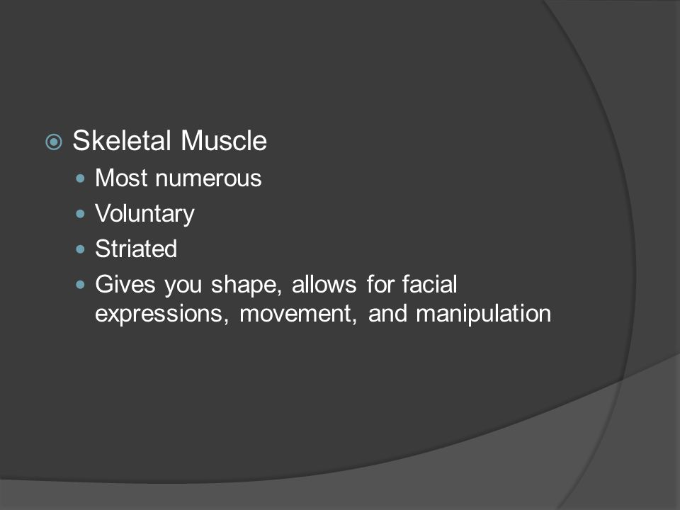 Skeletal Muscle Most numerous Voluntary Striated