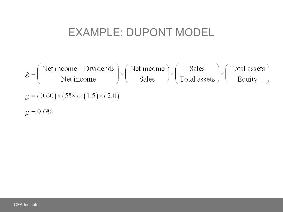 Example: DuPont Model
