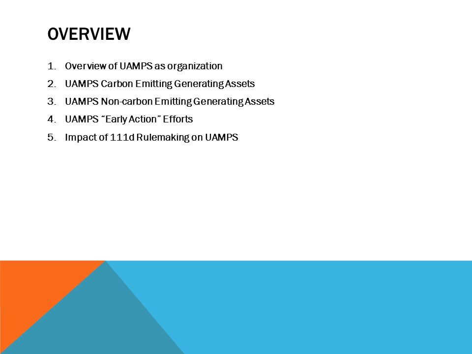 Overview Overview of UAMPS as organization