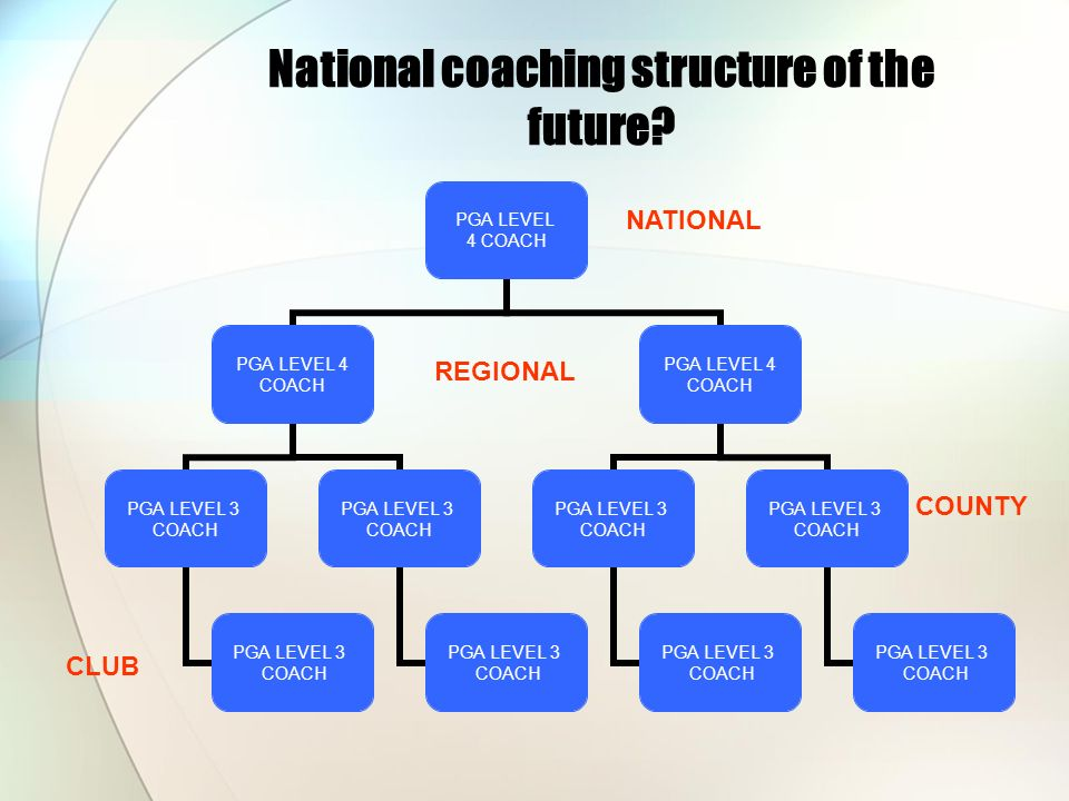 National coaching structure of the future