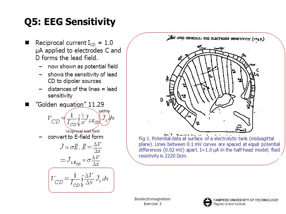Q5: EEG Sensitivity Reciprocal current ICD = 1.0 µA applied to electrodes C and D forms the lead field.
