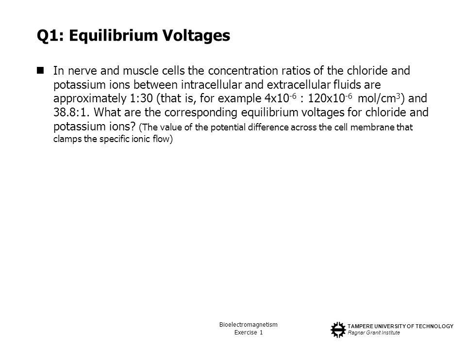 Q1: Equilibrium Voltages