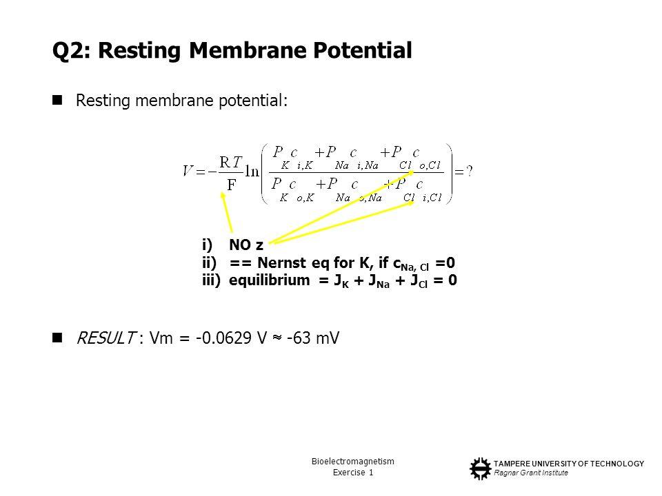 Q2: Resting Membrane Potential
