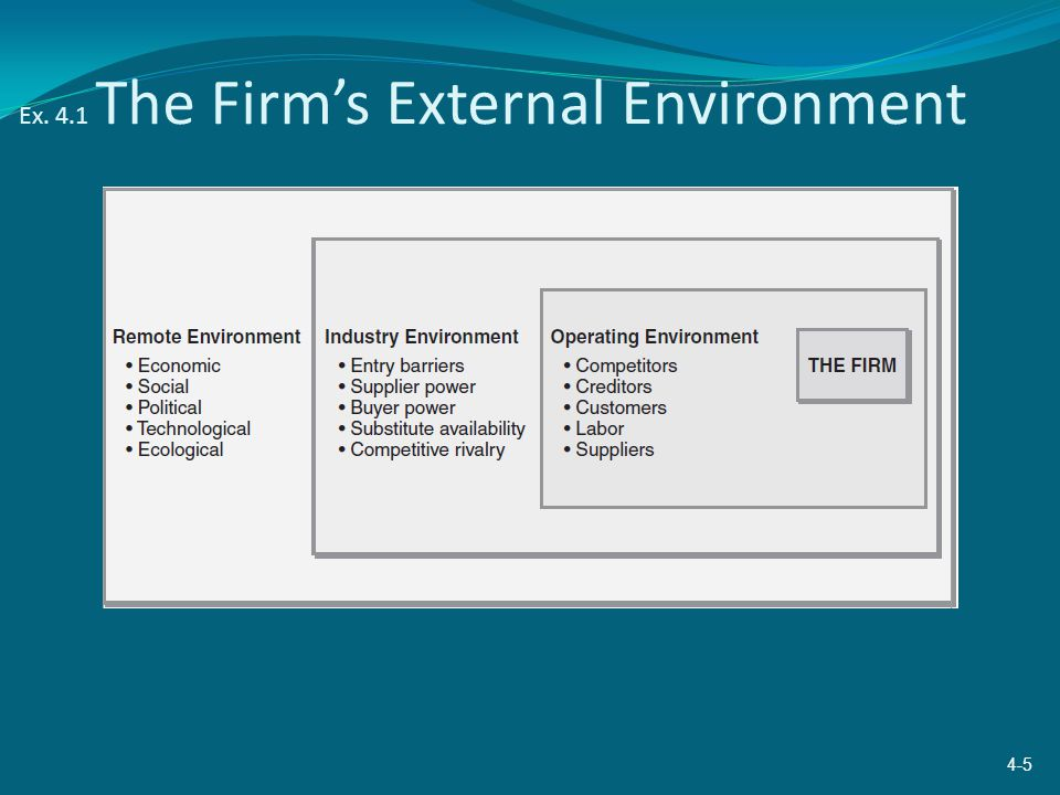 Ex. 4.1 The Firm's External Environment