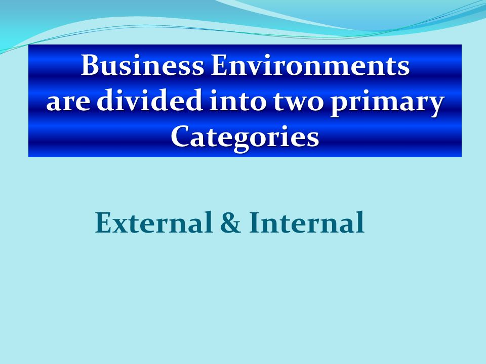Business Environments are divided into two primary