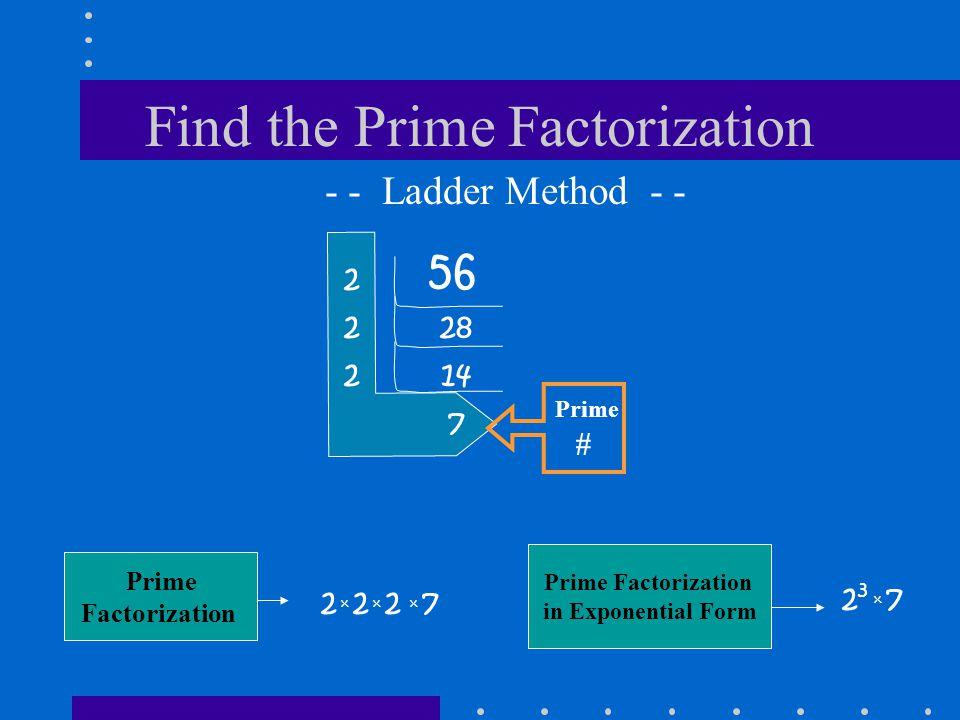 Find the Prime Factorization