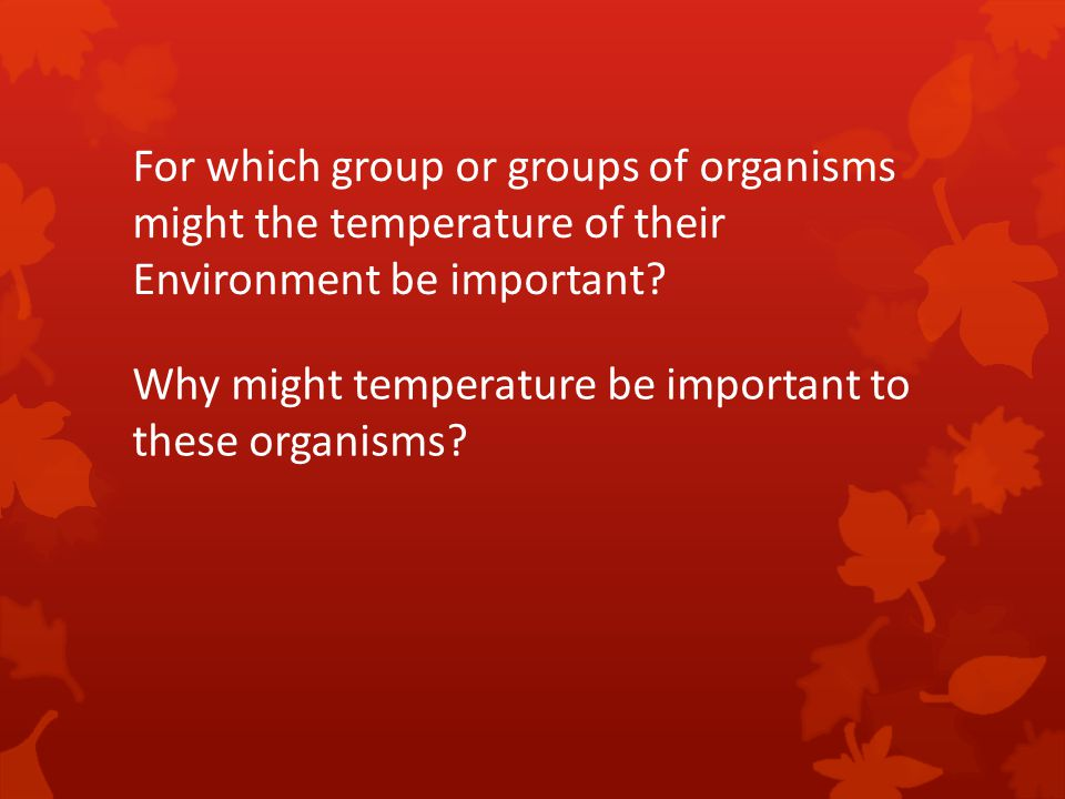 For which group or groups of organisms
